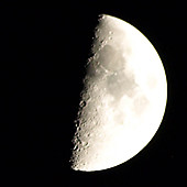 Moon_x_org