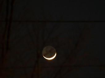Moon1_8