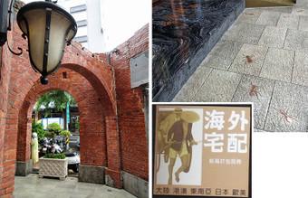 Taiwan_etc_13