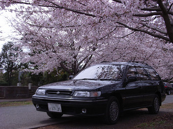 Subaru_sakura_2