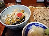 Iwashi_2