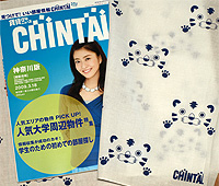 Chintai