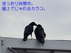 Kahaku_4_2