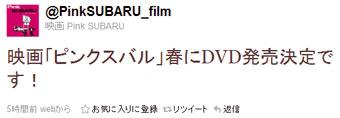 Pinksbr_dvd