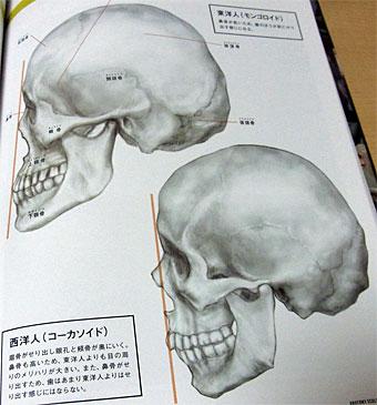Anatomy_1