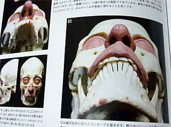 Anatomy_2