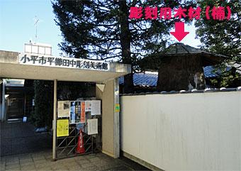Hiragushi_2