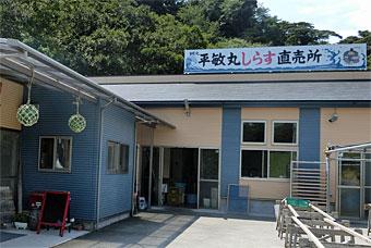 Sajima_5