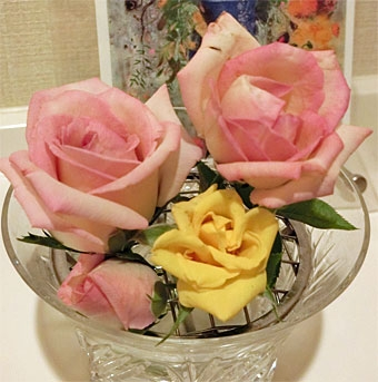 Rose_2_20200831204601